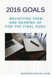goals-review