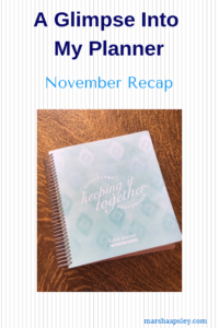 a glimpse into my November planner